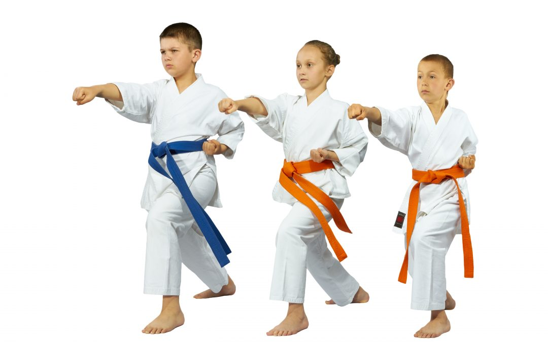 KARATE CLASSES - 6 MONTHS